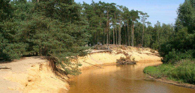 Natuurgebied Het Lutterzand